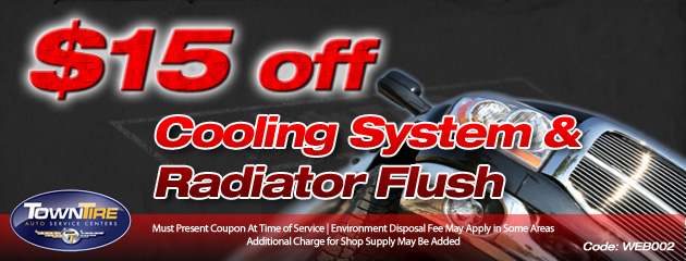 Cooling system and radiator flush special