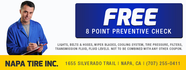 Free 8 point preventive check
