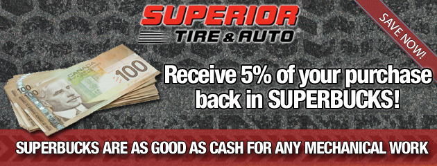 Receive 5 Percent Back in Superbucks
