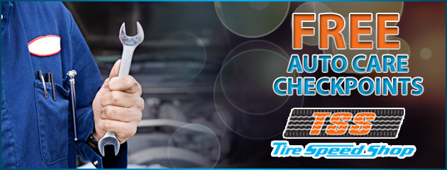FREE Auto Care Checkpoints