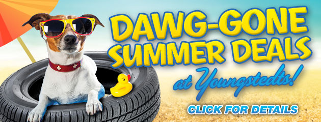 Dawg-Gone Summer Deals