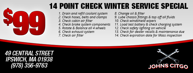 14 point winter check